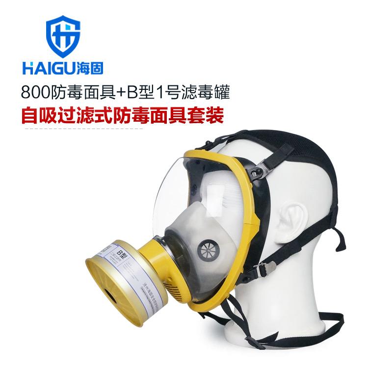 海固800球型大视野防毒口罩+B型1号滤毒罐-综合防