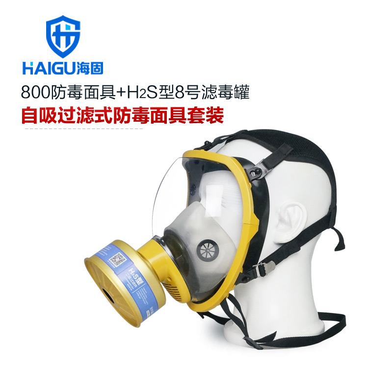 2014首款高端-海固800球型大视野防毒口罩+H2S型8号