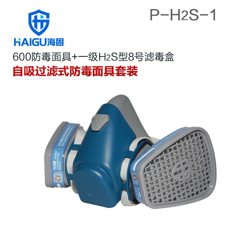 硫化氢气体防毒面具套装-海固600半面罩+H2S型8号